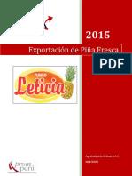 PLANEX FUNDO LETICIA FINAL OK.pdf