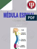Médula espinalM2