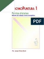 CROMOPUNTURA_LIBRO.pdf