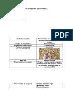 Plantilla Plan Maestro(1)