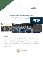 Safework en El Ingenio Panuco