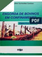 Engordadebovinosemconfinamento.pdf