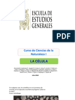 celulas - 0.pptx
