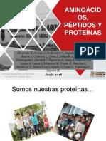 CLASE 10 PROTEINAS.pptx