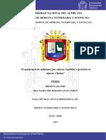Apaza Teran Maria Del Rosario