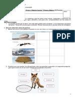 Evaluaciòn de Ciencias Naturales - Seres Vivos y Animales Inertes 2018 Primeros (1)