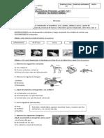 evaluacion de proceso unidad2.docx