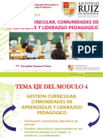 comunidades de aprendizaje y liderazgo pedagogico