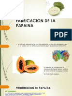 FABRICACION DE LA PAPAINA.pptx