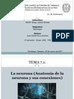 1.- Neurona