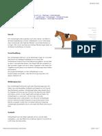 Hilfszügel Übersicht.pdf