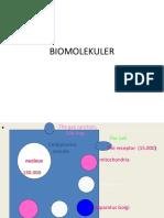 BIOMOLUKULER