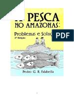 A Pesca No Amazonas - Problemas e Soluções - 2 Edição
