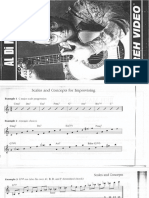 Al Di Meola - REH Instruction Video Booklet.pdf