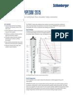 PIPESIM_2015_ps.pdf
