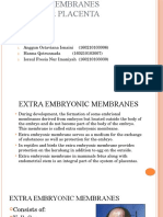 Plasenta Dan Selaput Embrio Fix