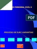Proc Ejec Garantia