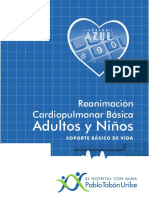 RCP_basico modificacion_final 2016.pdf