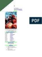 Pomegranate Wikipedia English