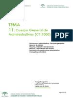 334623377-Tema-11-pdf.pdf