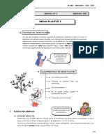 II BIM - BIOLOG - 2do. Año - Guía 3- Reino Plantae