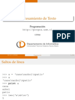 13_Procesamiento_Texto
