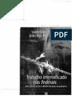 Trabalho-intensificado-federais-SGUISSARDI-E-REIS.pdf