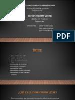 curriculum vitae.pptx