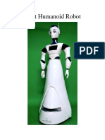 Dbot Humanoid Robot