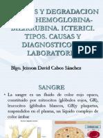 Hemoglobina y Bilirrubina