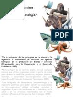 Que Es La Biotecnologia(AP) 2017