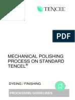 Mechanical Polishing Process