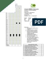 Prueba Semestral Lenguaje 5º.docx