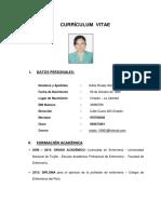Currículum Vitae i Parte