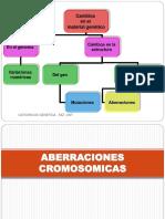 1696696202.Aberraciones Cromosomicas 2015