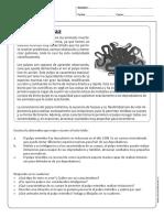 leng_comprensionlectota tercero 4.pdf