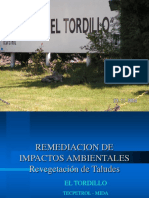 5- Remediacion de Impactos Ambientales. Reveg de Taludes