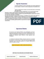 VALORIZACION POR EL METODO DE OPCIONES