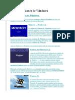 Tipos y Versiones de Windows