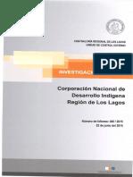 Informe Investigacion Especial 480-15 Conadi Los Lagos Eventuales Irregularidades en Licitacion Publica - Junio 2015