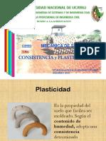 LIMITES DE CONSISTENCIA.ppsx