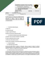 Consulta N. 24(Cabezal).docx