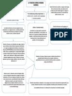 mapa 1 acto juridico y pérsonas.docx