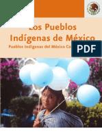 Monografia Nacional Pueblos Indigenas Mexico