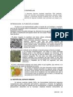 Tema 10b2 El proceso de urbanización en el planeta. Repercusiones ambientales y socioeconómicas (España)
