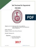 PREPARACION DE MINERALES 2.pdf