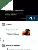 Proyectos s11 (1)