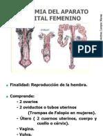 GENITAL_FEMENINO_-2016.ppt_(2)(3)