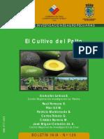 LemusGamalier2005.pdf