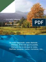 65-Facundo Cabral..pps